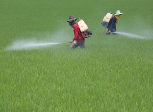 Agriculture workers pesticide