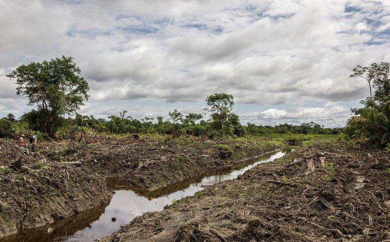 Choco, Colombia, November 2019, Credit Vicki Brown, FPP, Accompanied by CIJP 2.jpg