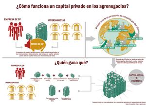 Estructura_del_capitalES-05_xlarge.png