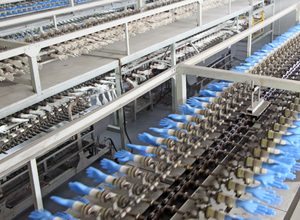 PVC gloves production line overhead in a factory