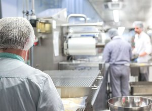 Kitchen meat factory work