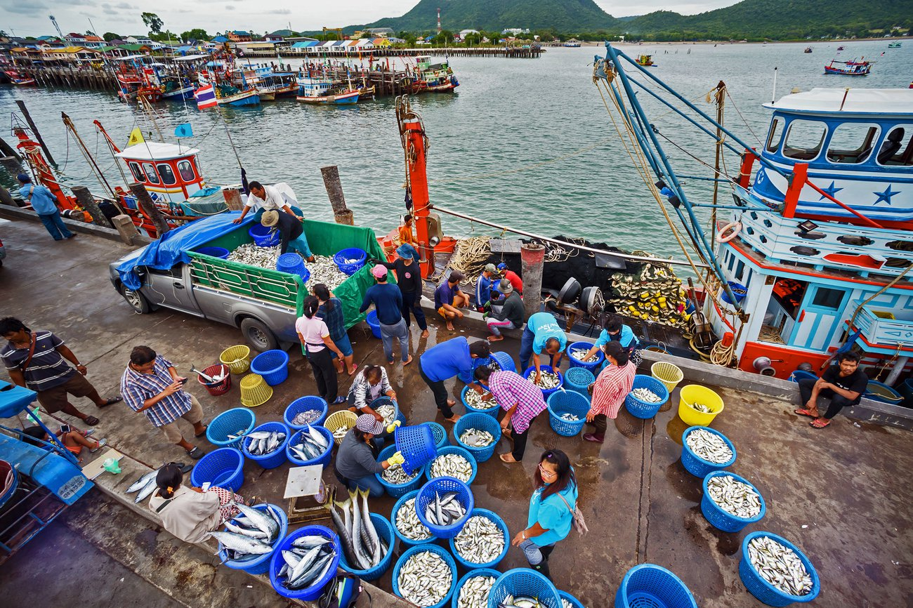 Fishermen in a port in Bang Saray, Thailand.