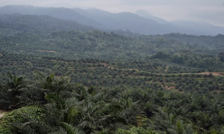 Palm_oil_plantation_Sumatra_World_Bank_photo_credit_Sutanta_Aditya_AFP_Getty_Images