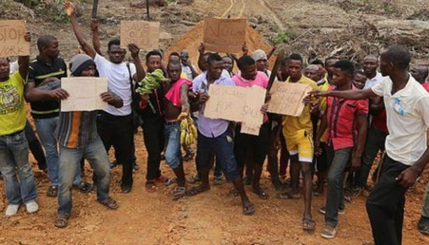 Farmers protesting Wilmar's destruction of their lands, near Ibogo Village, Cross River State. May 2015