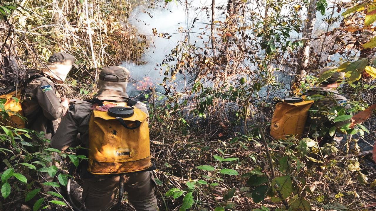 Brasil Queimadas Na Amazônia Podem Ter Sido Provocadas Por