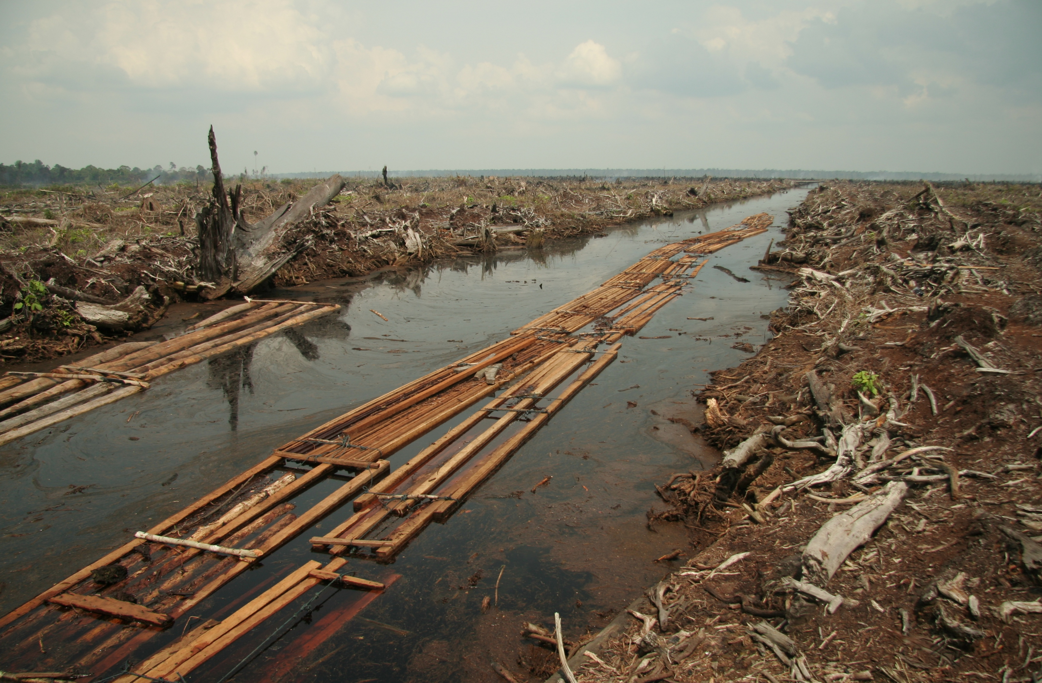 river contamination_photo by Wikimedia