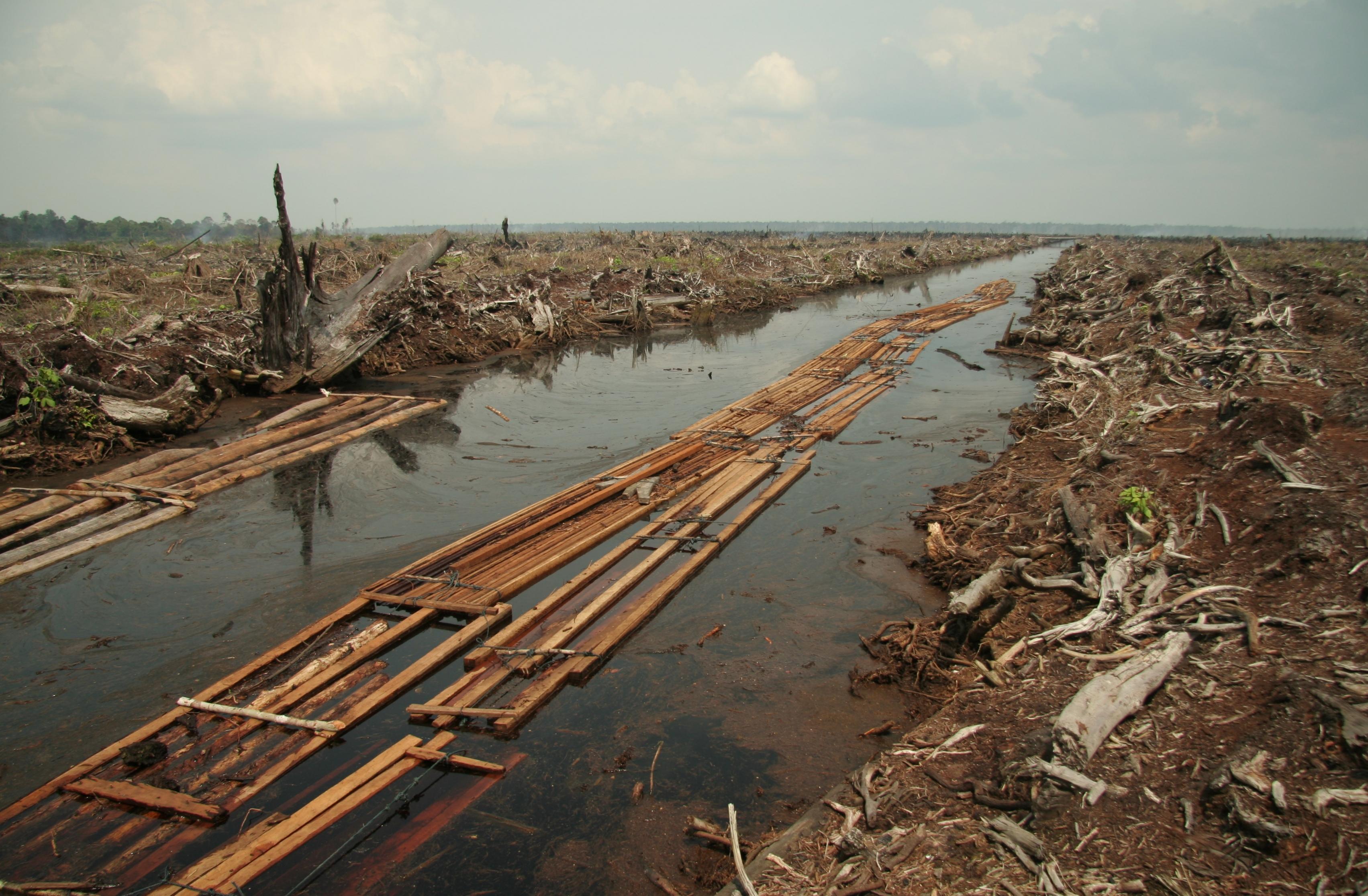 river contamination_photo by Wikimedia