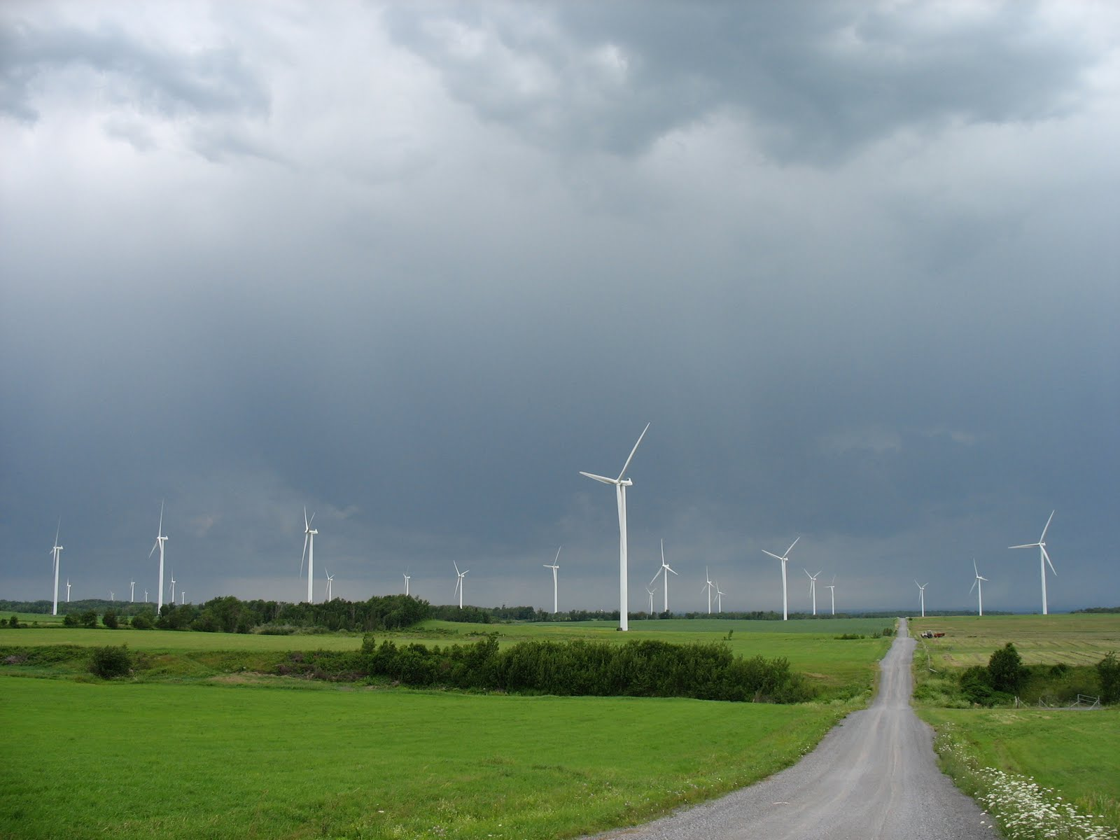 Wind energy facility in the Northeastern United States. Location: USA Photographer: Paul Cryan, , U.S. Geological Survey
