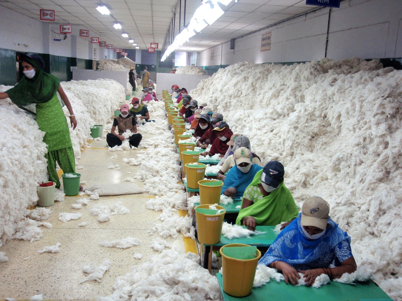 cotton_before_processing_at_an_Indian_spinning_mill_wikimedia