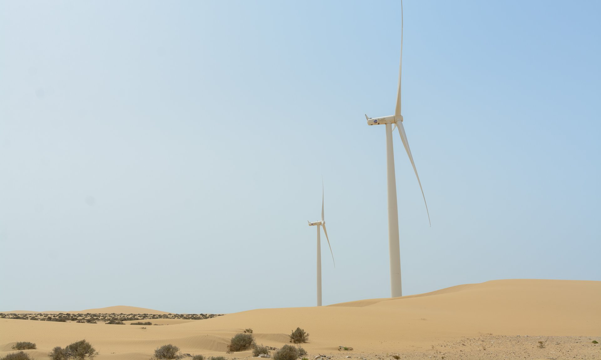 Morocco Western Sahara wind energy panies in Western Sahara