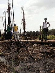 Oil-pollution-Niger-Delta-Photo-credit-Sosialistisk-Ungdom