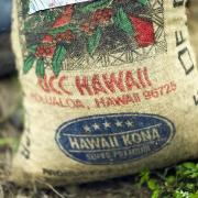 Hawaii coffee By: Christopher Michel, Creative commons