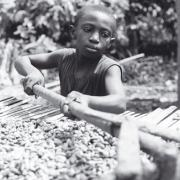 child labour Côte d'Ivoire Credit - International Labour Rights Forum