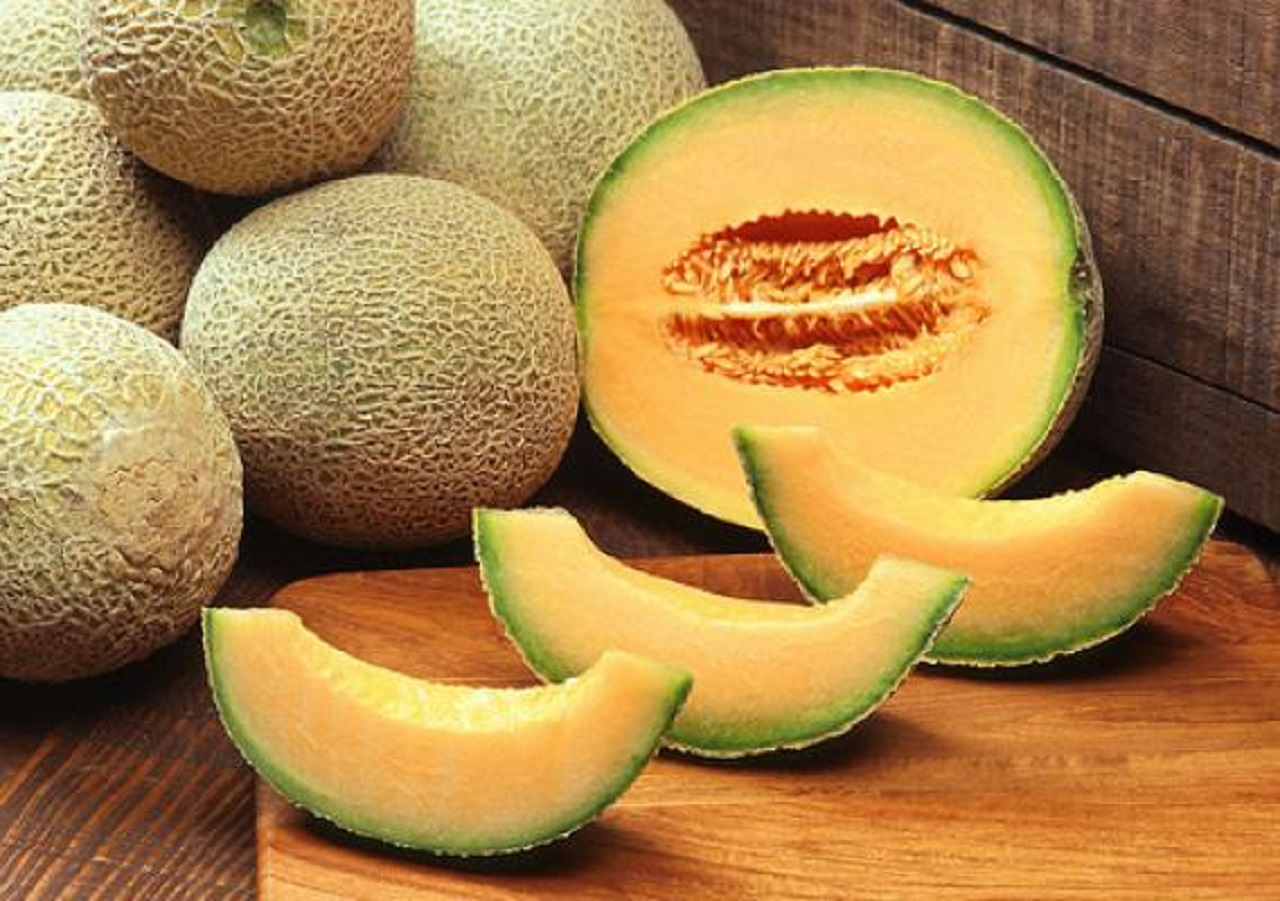 melon_credit_USDA