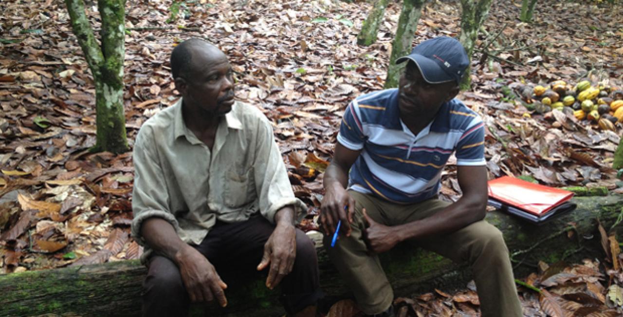 Côte d'Ivoire: Fair Labor Association assessment of child labour ...