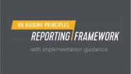 UNGP Reporting Framework Logo
